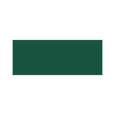 RINNEN
